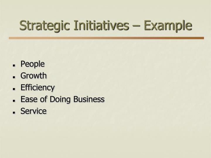 Strategic Initiatives – Example
