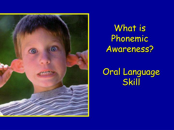 What is Phonemic Awareness?