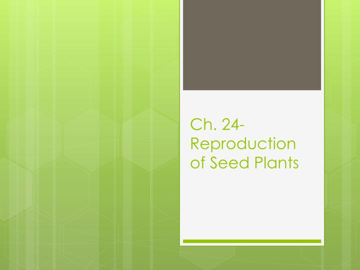 Ch 24 reproduction of seed plants
