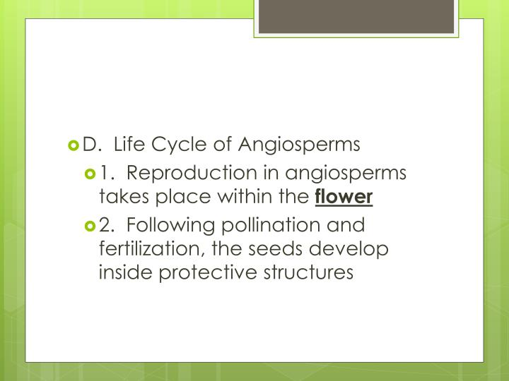 D.  Life Cycle of Angiosperms