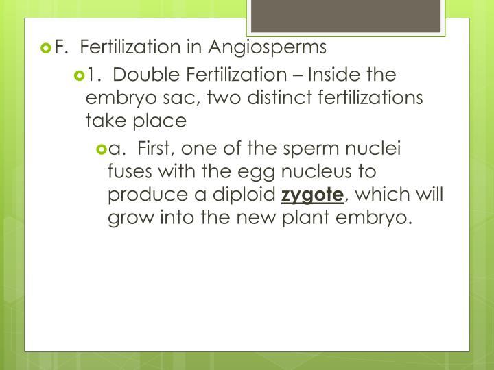 F.  Fertilization in Angiosperms