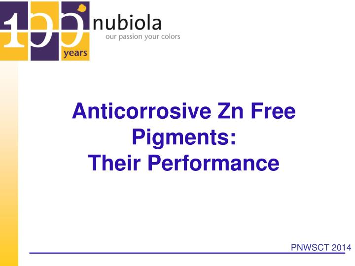 Anticorrosive zn free pigments their performance