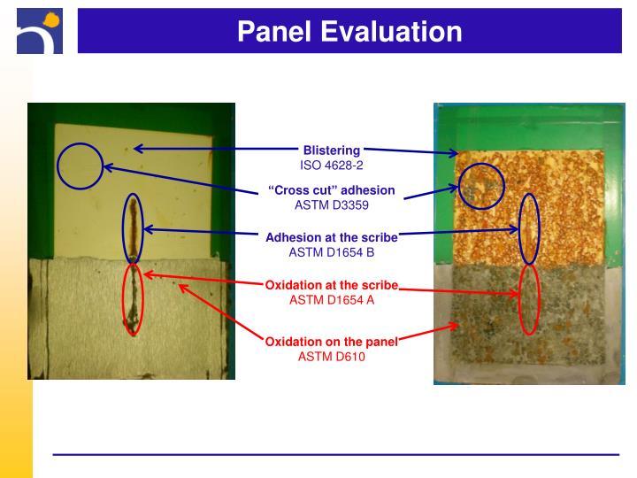 Panel Evaluation