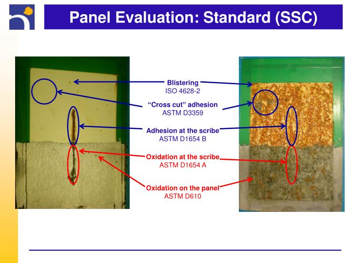 Panel Evaluation: Standard (SSC)