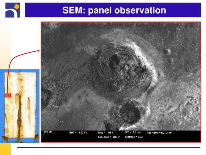 SEM: panel observation