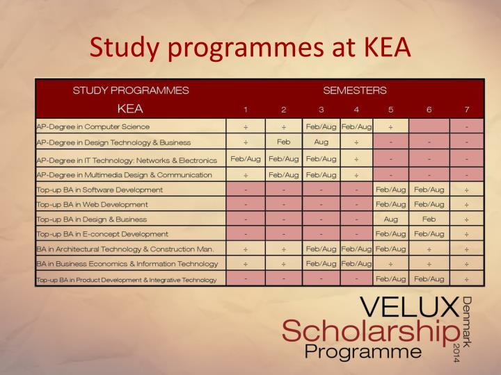 Study programmes at KEA