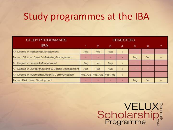 Study programmes at the IBA