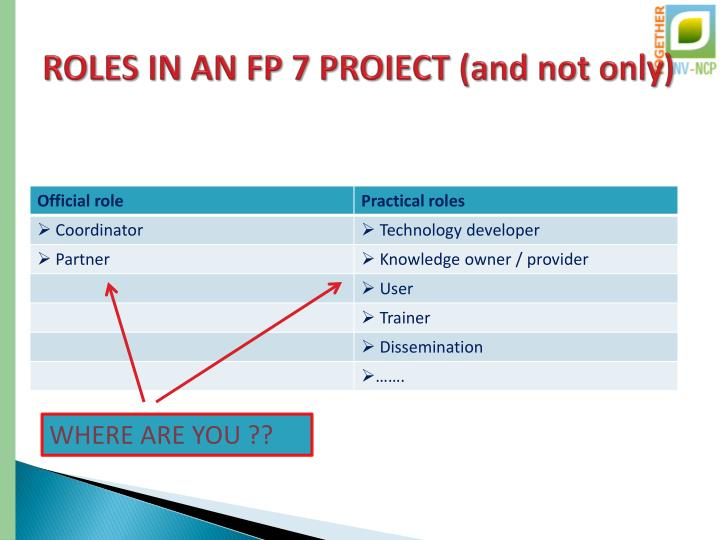ROLES IN AN FP 7 PROIECT (and not only)