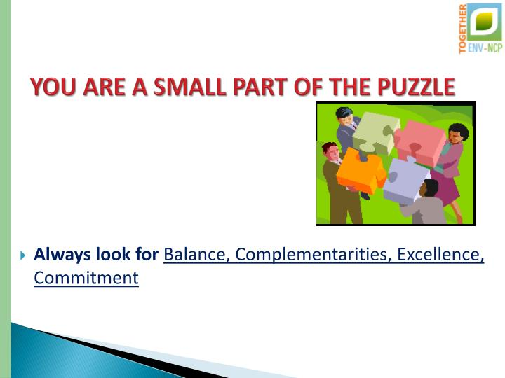 YOU ARE A SMALL PART OF THE PUZZLE