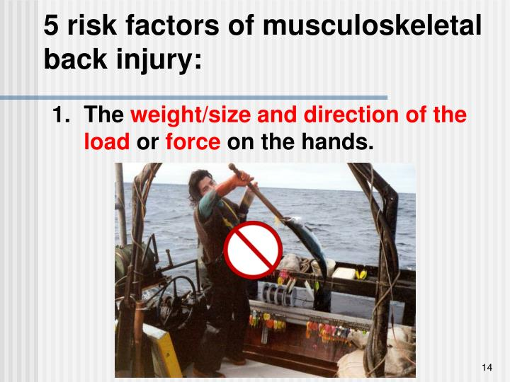 5 risk factors of musculoskeletal back injury: