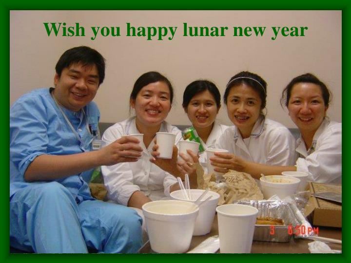 Wish you happy lunar new year