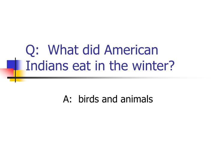 Q:  What did American Indians eat in the winter?