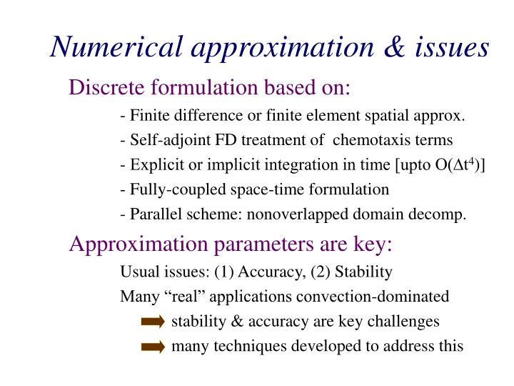 Numerical approximation & issues