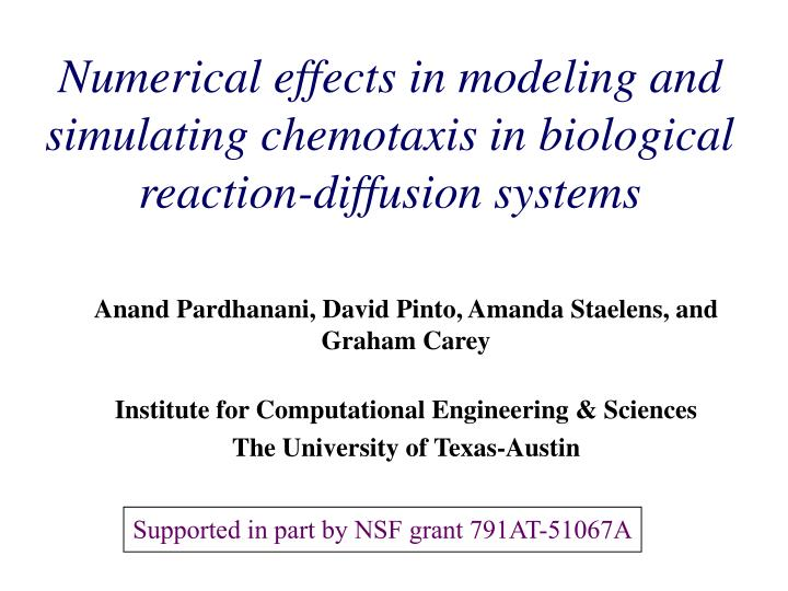Numerical effects in modeling and simulating chemotaxis in biological reaction diffusion systems
