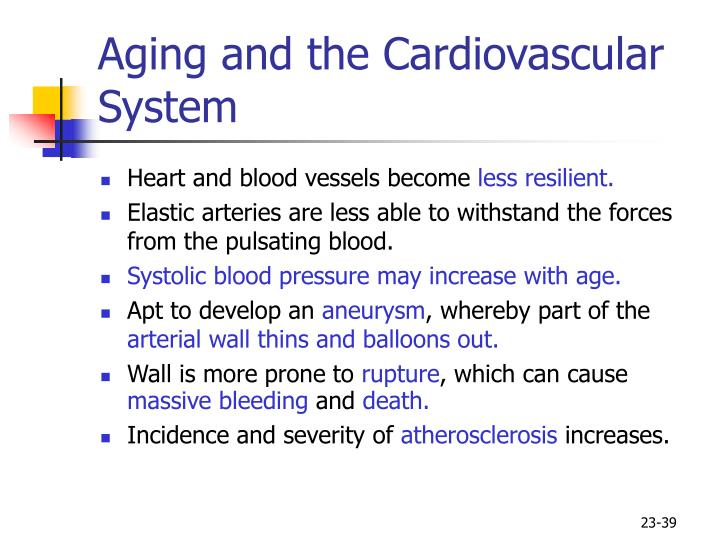Aging and the Cardiovascular