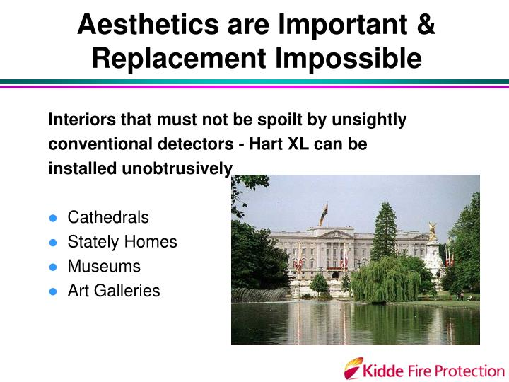 Aesthetics are Important & Replacement Impossible
