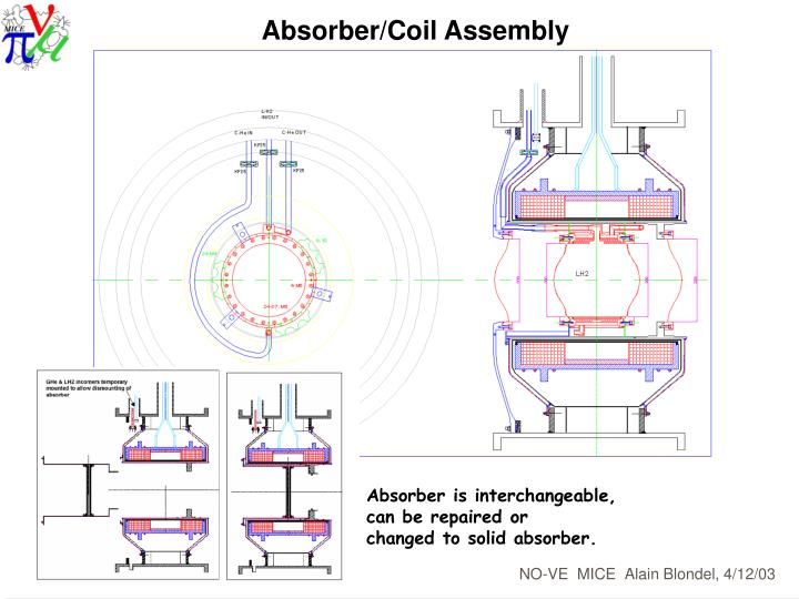 Absorber/Coil Assembly