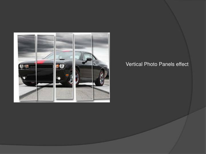 Vertical Photo Panels