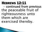 hebrews 12 111