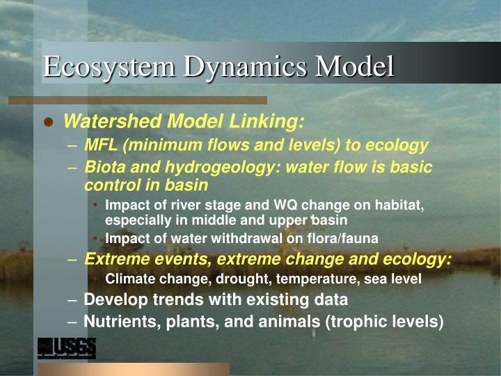 Ecosystem Dynamics Model