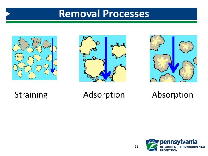 Removal Processes