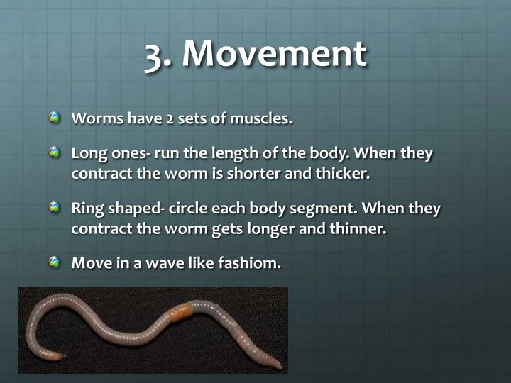 3. Movement