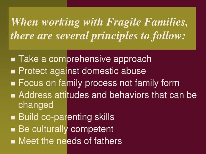 When working with Fragile Families, there are several principles to follow: