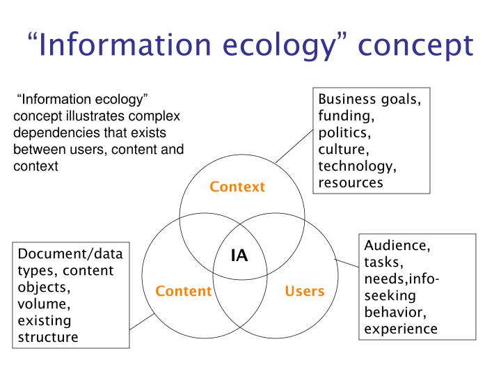 """""""Information ecology"""" concept"""