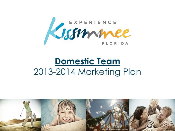 Domestic team 2013 2014 marketing plan