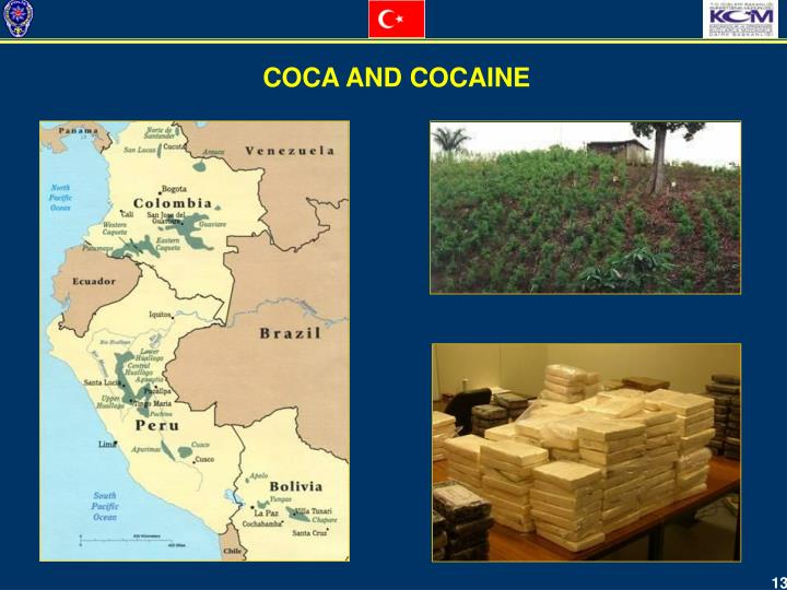 COCA AND COCAINE