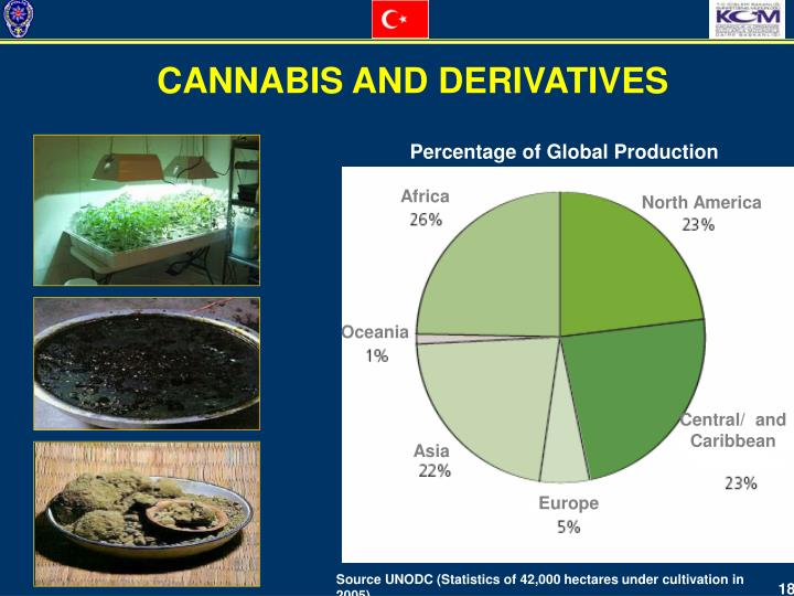 CANNABIS AND DERIVATIVES