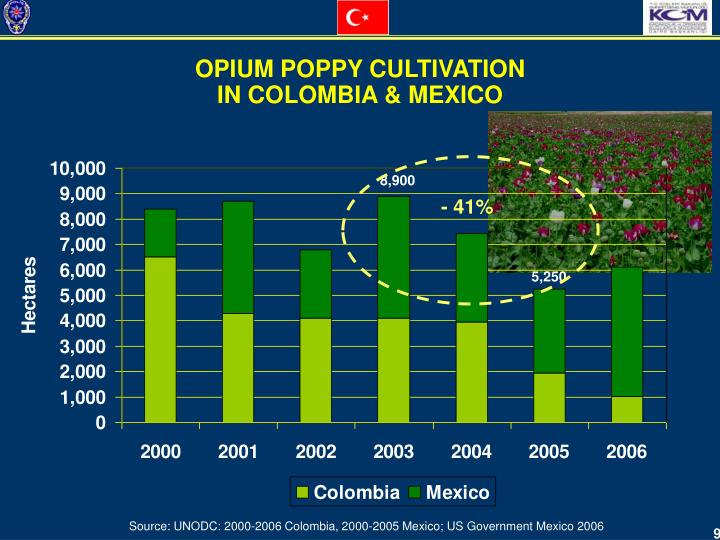 OPIUM POPPY CULTIVATION