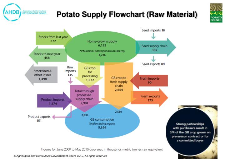 Potato Supply Flowchart (Raw Material)