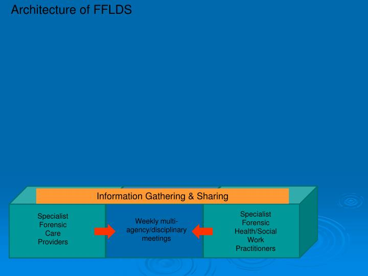 Architecture of FFLDS