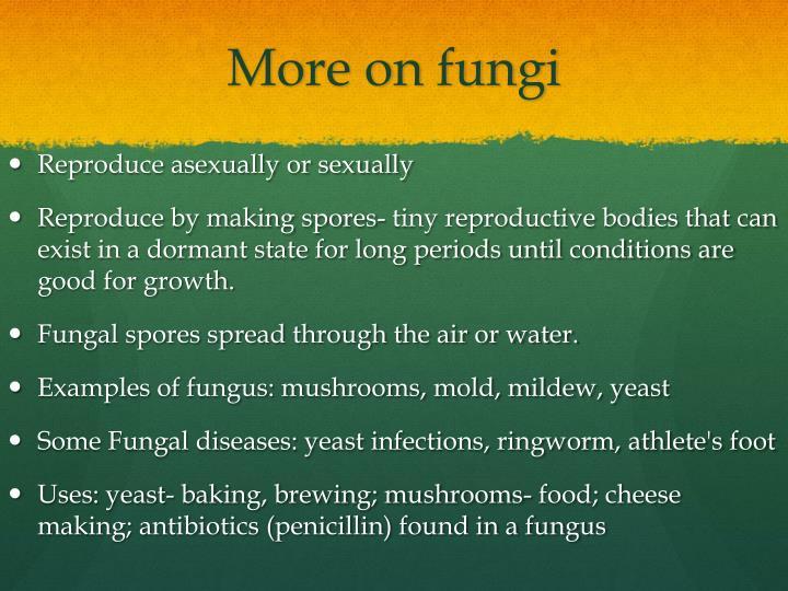 More on fungi