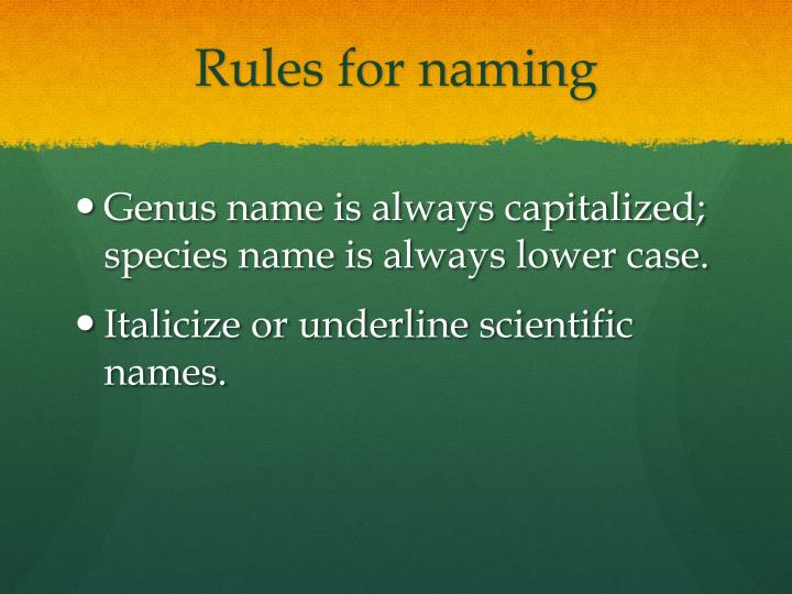 Rules for naming