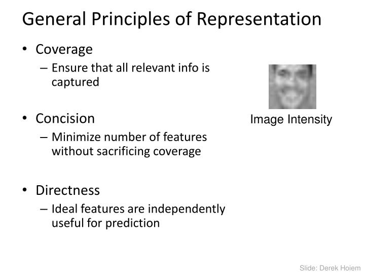 General Principles of Representation