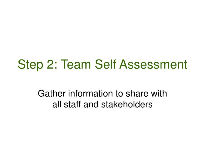 Step 2: Team Self Assessment