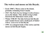 the wolves and moose on isle royale