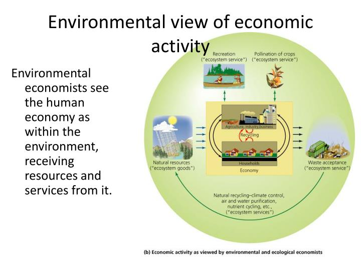 Environmental view of economic activity