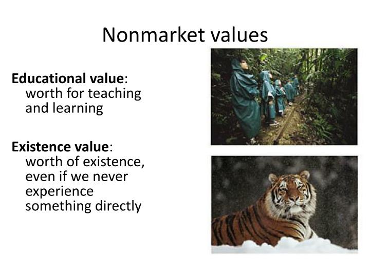 Nonmarket values