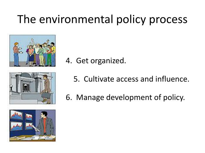 The environmental policy process