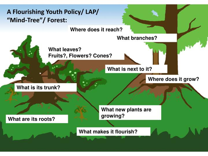 A Flourishing Youth Policy/ LAP/
