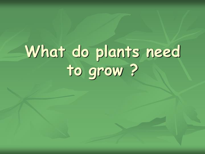 What do plants need to grow