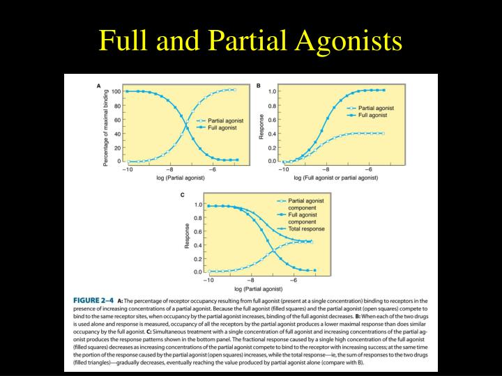 Full and Partial Agonists
