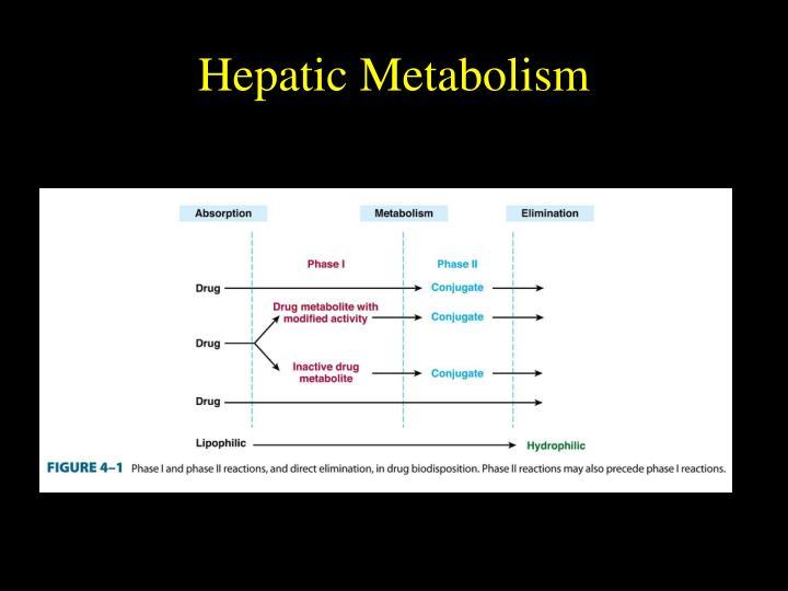 Hepatic Metabolism