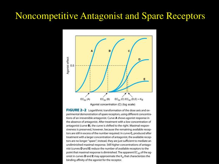 Noncompetitive Antagonist and Spare Receptors