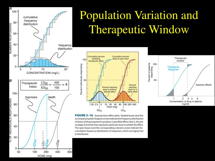 Population Variation and Therapeutic Window