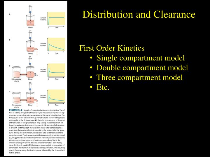 Distribution and Clearance