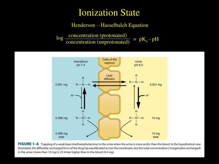 Ionization State